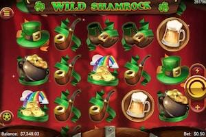 wild shamrock